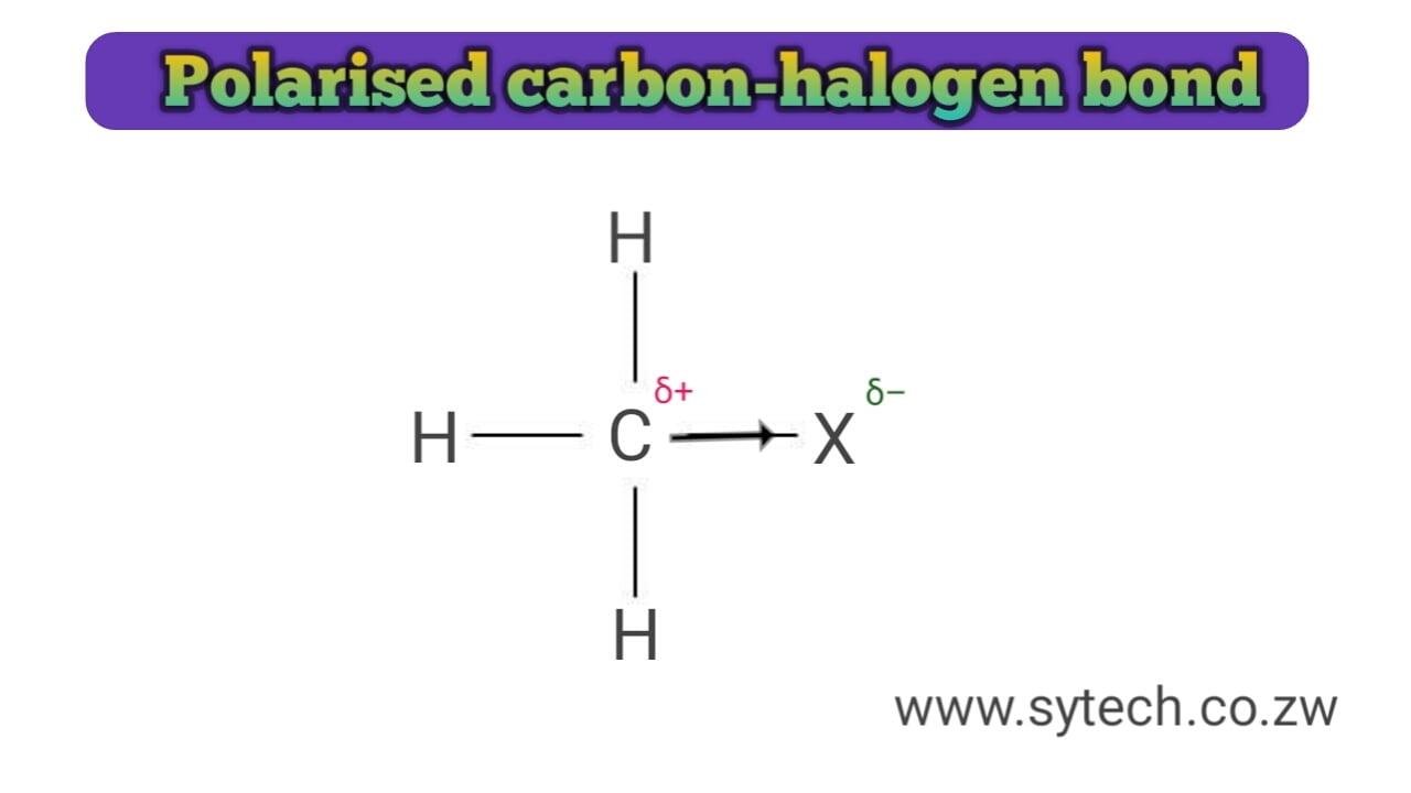 Polarised carbon-halogen bond