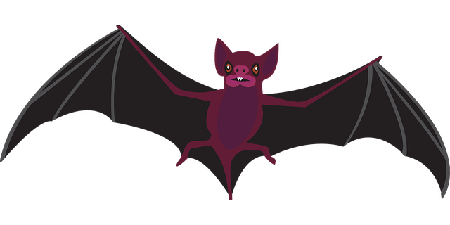 bat 1143405 640 Guinea confirms West Africa's first case of rare but deadly Marburg virus