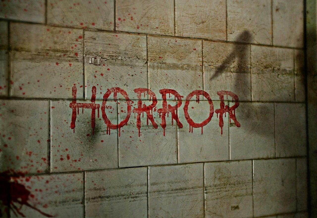 horror 1160360 1280 Horror As 16-year-old Boy Kills 3 People